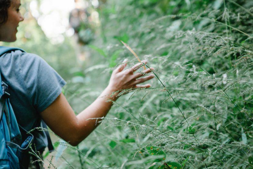 Mental Health Awareness Week 2021: a healthy mind through nature